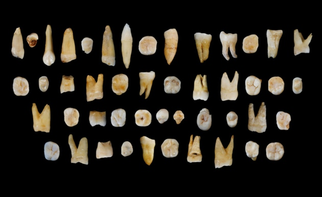 Estes 47 dentes humanos, com 80 a, 120 mil anos, foram encontrados num sistema de grutas de calcário em Daoxian, na China