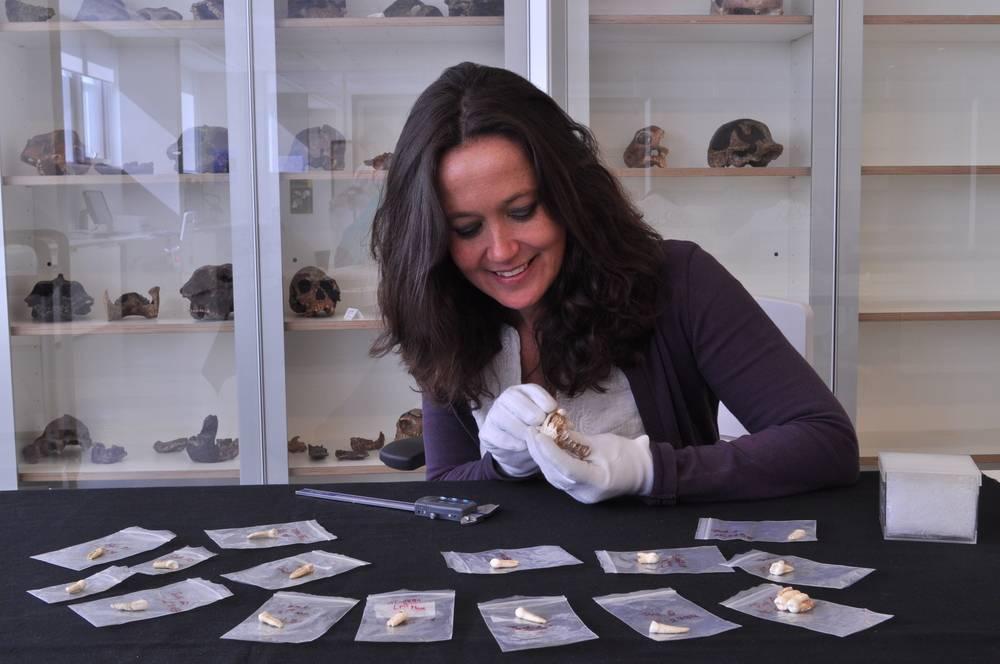 A arqueóloga María Martinón-Torres estudando os dentes encontrados em Daoxian