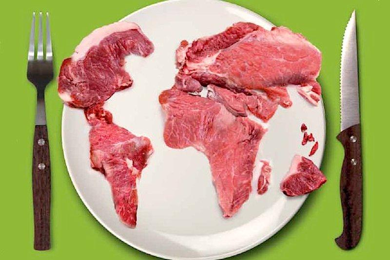 Você sabe de onde vem o bife, a salsicha ou o hambúrguer que você come?