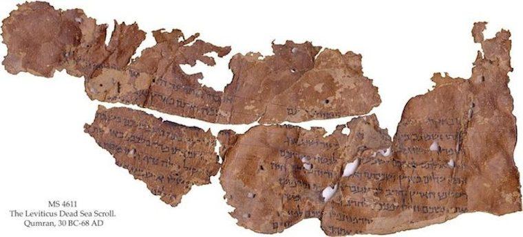 Fragmentos do Livro de Levítico, um dos Manuscritos do Mar Morto