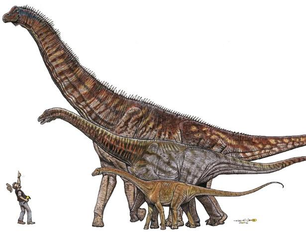 O titanossauro Austroposeidon magnificus tinha 25 metros de comprimento