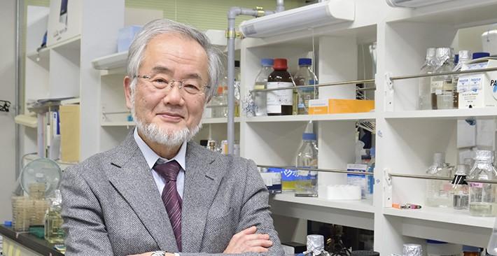 Yoshinori Ohsumi, Nobel da Medicina 2016