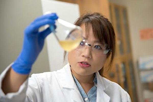 Jennifer Kan, pesquisadora de Engenharia Química da Caltech