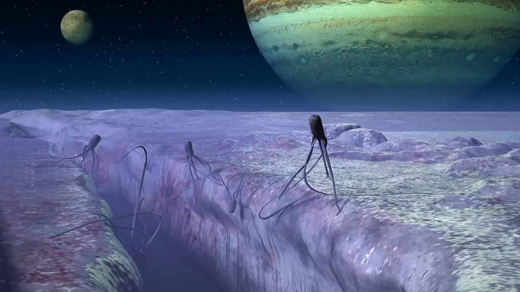 Os habitantes de Europa, uma das luas de Júpiter, tomando banho de Sol. Se existissem, provavelmente seriam assim