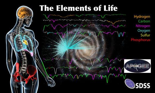Os seis elementos mais comuns da vida na Terra (carbono, hidrogênio, azoto, oxigênio, enxofre e fósforo) são também os mais abundantes no centro de nossa galáxia