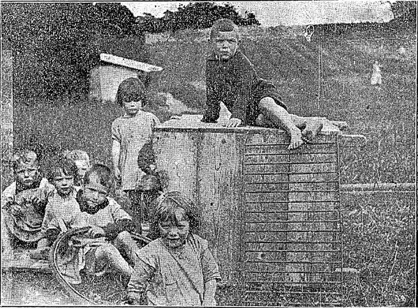 Fotos de algumas das crianças da Casa no Connaught Tribune, 21 de Junho 1924