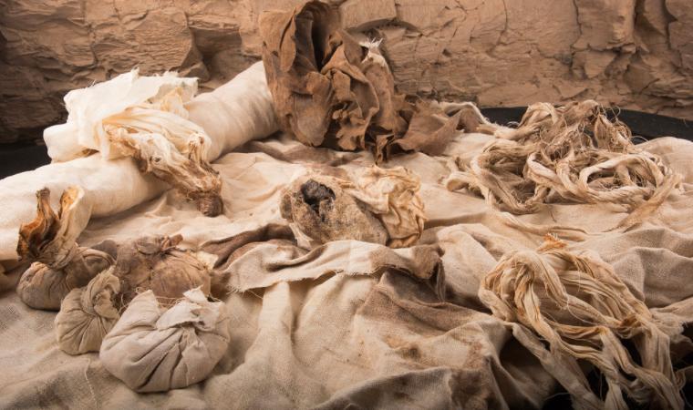 Materiais de embalsamento encontrados no depósito do vizir Ipi