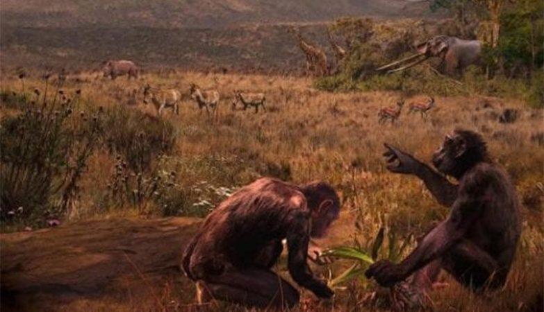 Ilustração do Graecopithecus freybergi que, com 7,2 milhões de anos, pode ser o hominídeo mais antigo do mundo