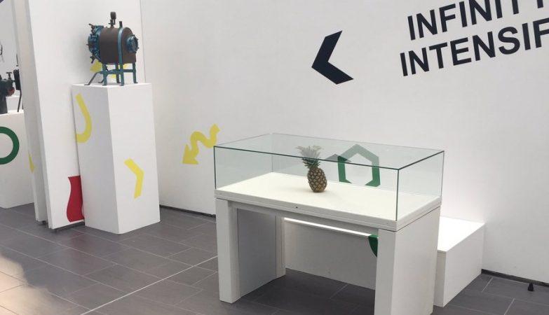 Abacaxi perdido em galeria é confundido com obra de arte - Ciberia 16b7ef1aad