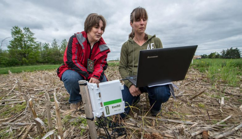 As pesquisadoras Sasha Kravchenko e Jessica Fry, da Michigan State University