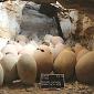 Arqueólogos encontram coração mumificado do tempo dos faraós