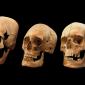 Mistério dos crânios alongados encontrados na Baviera é desvendado