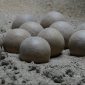 Grande depósito de ovos de dinossauro é descoberto na Espanha